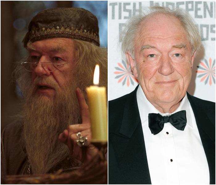 Michael Gambon como Albus Dumbledore
