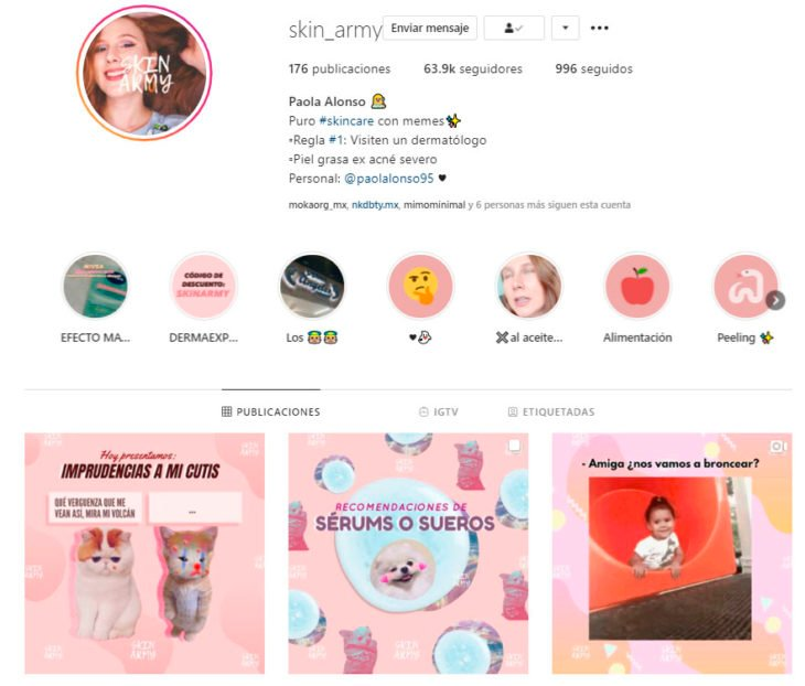 Screen shot of the Instagram profile of the skin_army account
