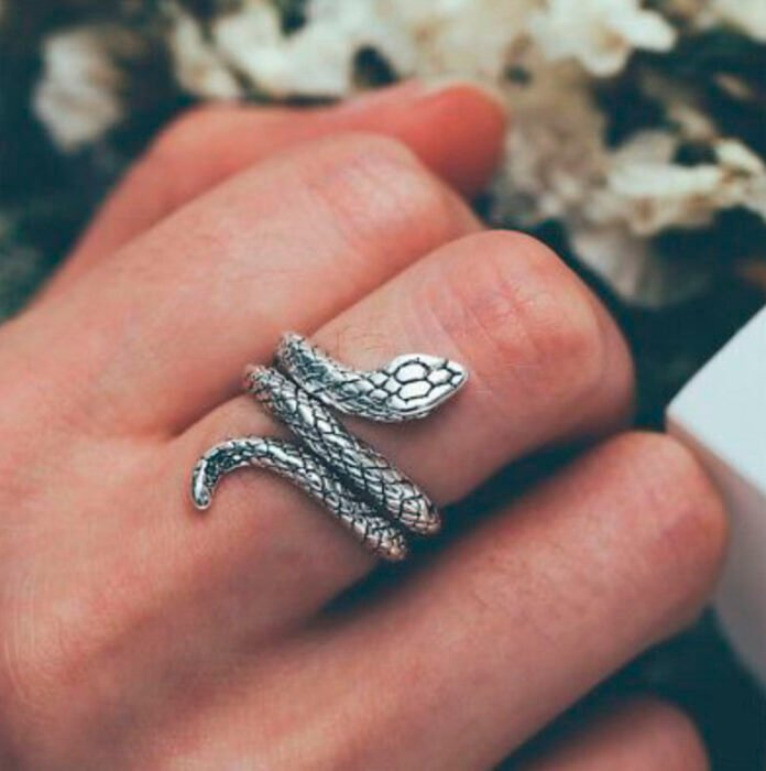 Silver-colored snake-shaped ring