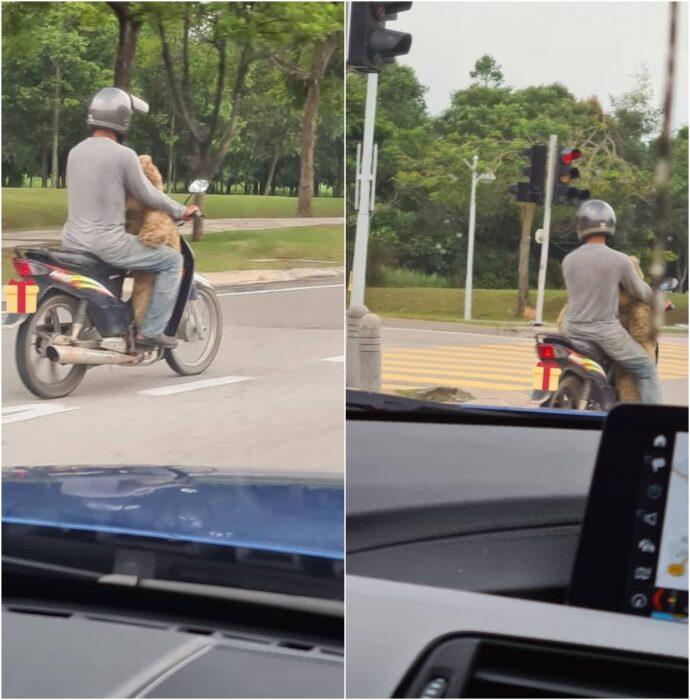 Hombre paseando en motocicleta
