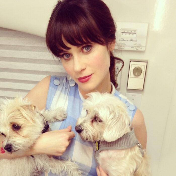 Famosos que han adoptado mascotas, perros o gatos; Zooey Deschannel cargando a sus dos perritos french poodles blancos, Dot y Zelda