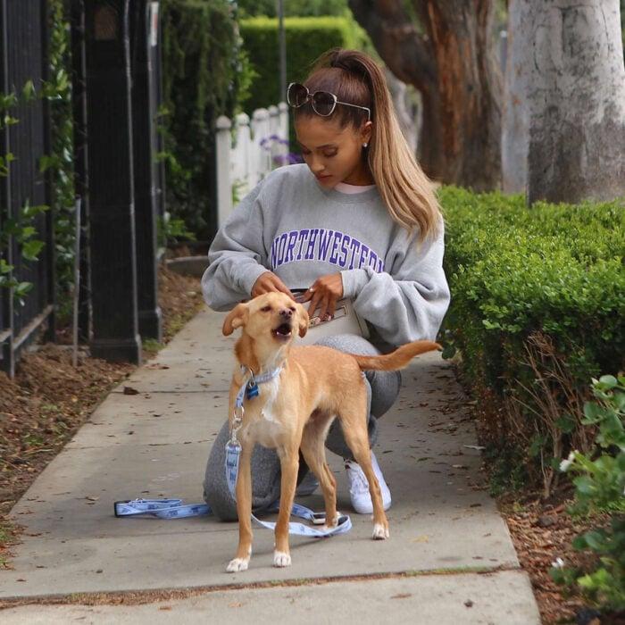 Famosos que han adoptado mascotas, perros o gatos; Ariana Grande en la calle paseando con su perrito Toulouse