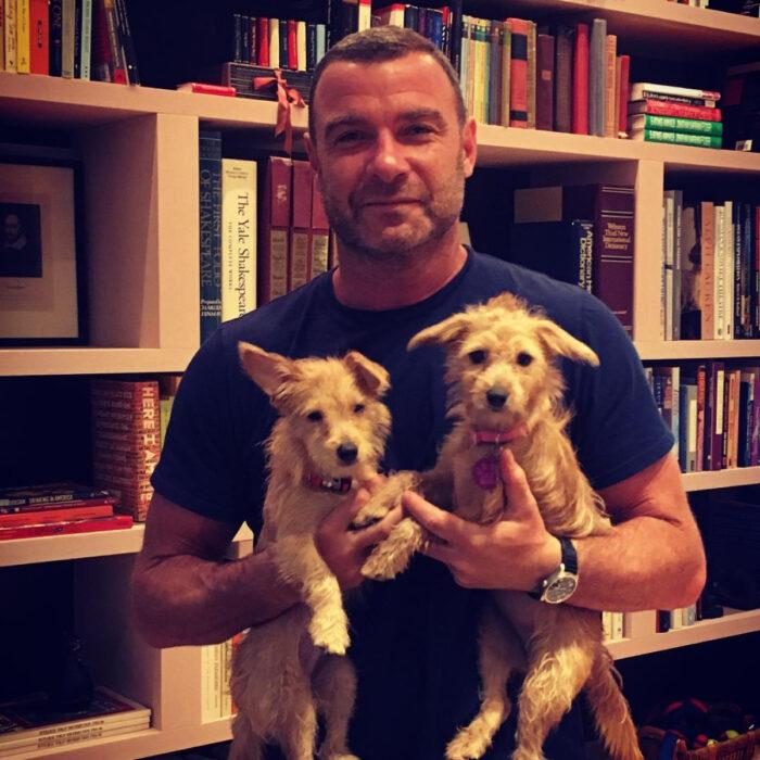 Famosos que han adoptado mascotas, perros o gatos; Liev Schreiber cargando a sus perritos en la biblioteca,, Willow y Scout