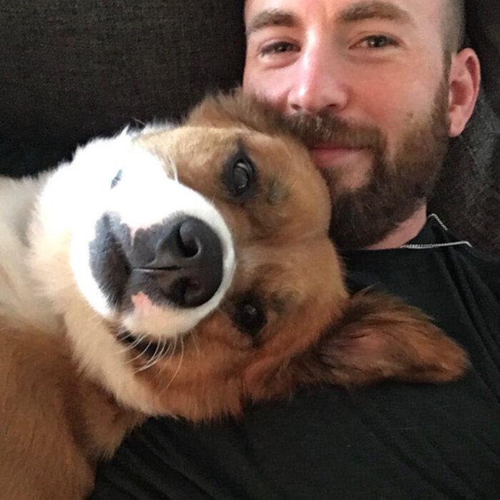 Famosos que han adoptado mascotas, perros o gatos; Chris Evans con su perrito Dosger, mestizo color café con blanco