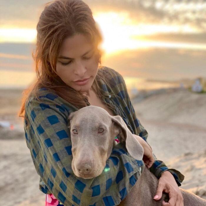 Famosos que han adoptado mascotas, perros o gatos; Eva Mendes en la playa con su perrito, Lucho, un Weimaraner gris de ojos claros