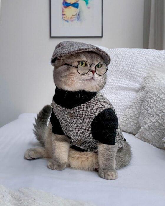 Benson, el felino a la moda; gato gris con rayas negras vestido con boina bohemia, lentes de aumento redondos y chaleco de cuadros
