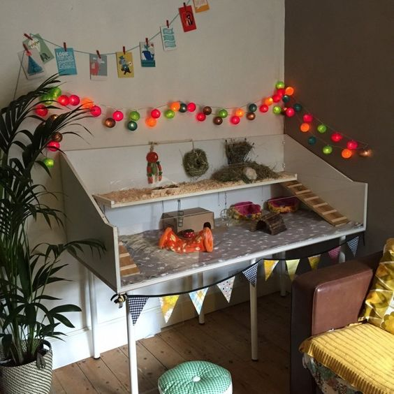Terrario para erizo de dos plantas hecha con madera blanca y paredes de vidrio y acondicionada con aserrín y casitas de madera