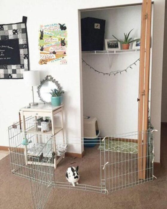 Jaula para conejo hecha con rejas plateadas al rededor de una pequeña habitación con una puerta abierta color café