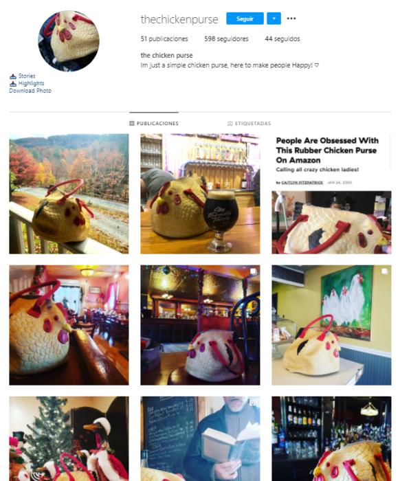 Instagram del bolso de pollo
