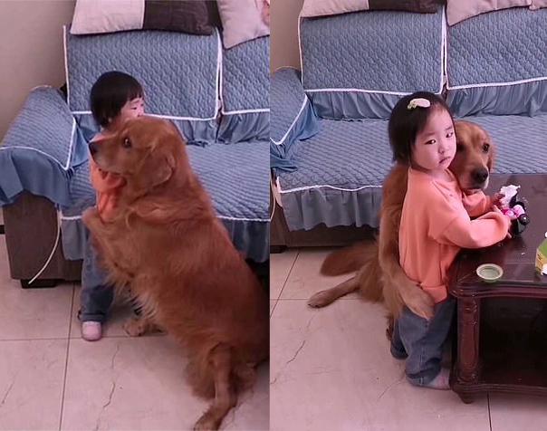 Perrito abrazando a su dueña después de que fuera regañada