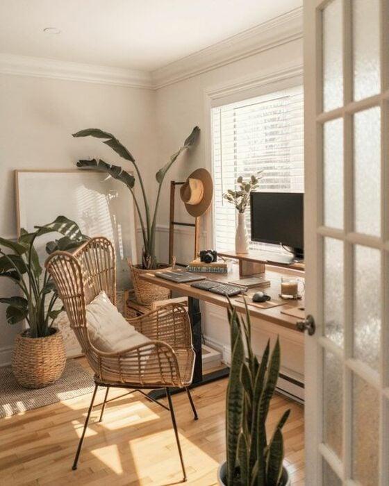 Estudio de trabajo decorado con varias plantas