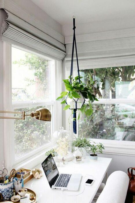 Espacio de trabajo decorado con una maceta colgante de la que cuelga una planta