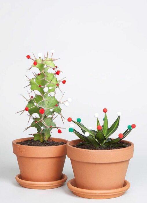 Cactus reales en sus macetas decorados con bolitas de navidad de colores