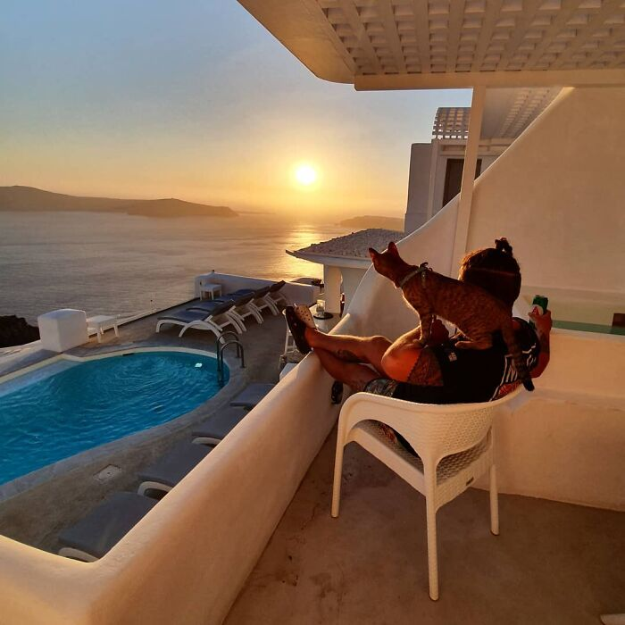Hombre sentado en silla blanca con un gato café de rayas negras parado en su hombro miran el atardecer en un balcón con vista a una piscina y al mar