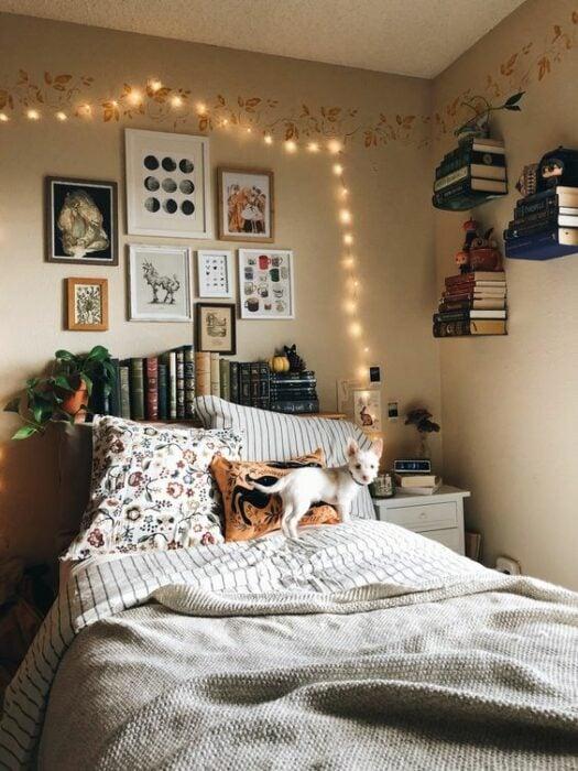 Habitación acogedora con cama blanca y un gato encima de ella. Las paredes son blancas y atrás de la cama hay un mueble para ordenar libros y en la pared cuadros de diferentes tamaños con una serie de luces amarillas