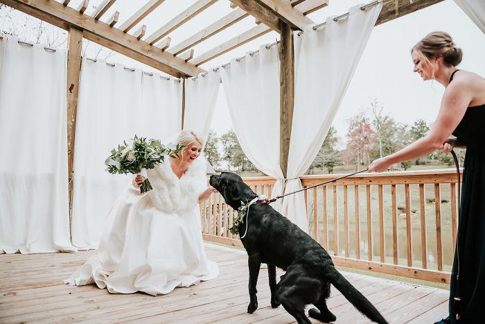 Perrito corriendo hacia su dueña vestida de novia mientras es sujetado por una de las damas de honor