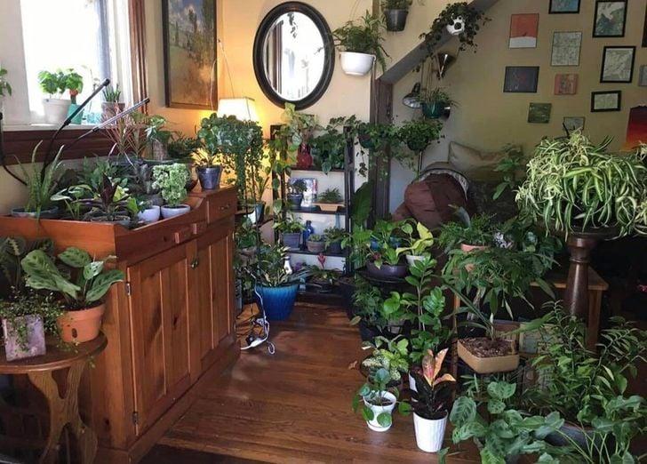 Jardín interior dentro de habitación con piso y muebles de madera con un espejo ovalado en la pared