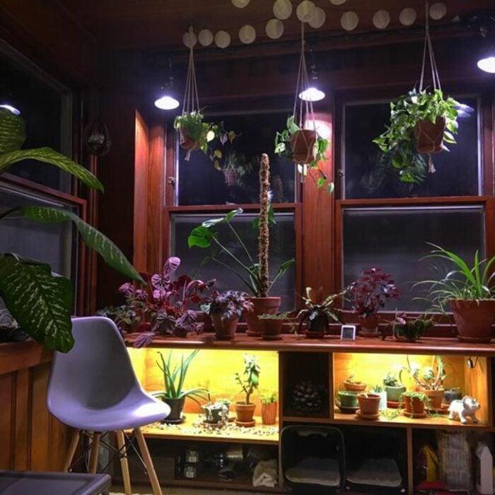 Plantas colgantes en habitación con ventanal grande con un escritorio iluminado en la parte de abajo con una silla blanca