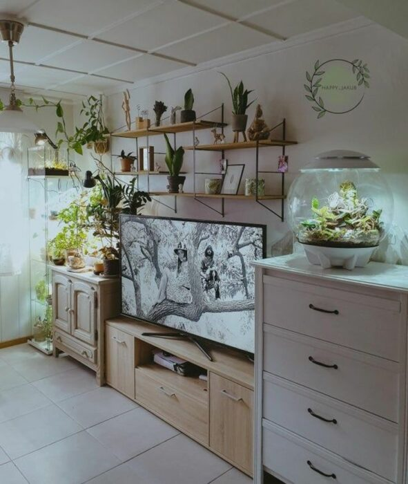 Habitación blanca con un mueble blanco y uno beige con una pantalla grande encima y repisas llenas de plantas