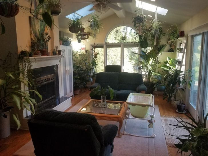 Sala de una casa con sillones negros y paredes blancas y piso de madera con plantas colgantes