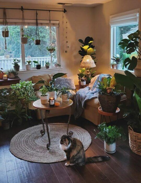 Habitación blanca amplia con una ventana con sillones cafés y una mesita redonda en medio decorado con plantas