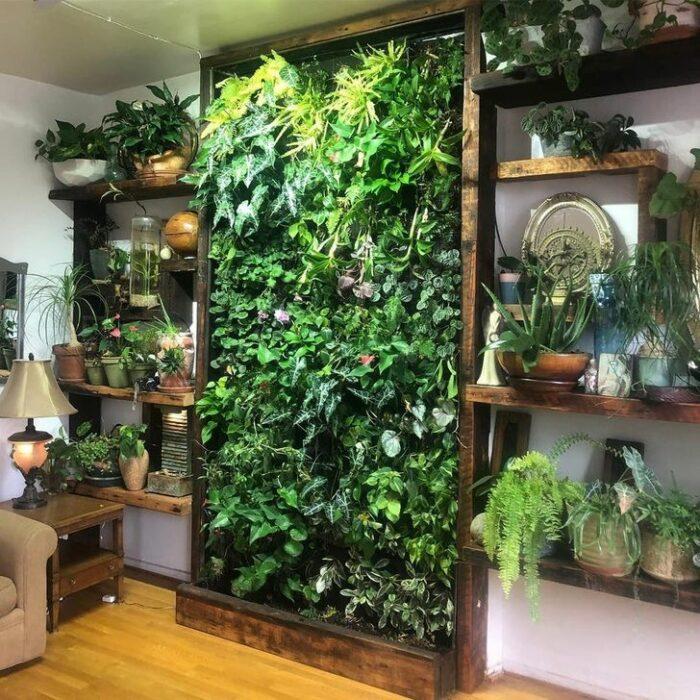 Pared blanca con repisas de madera con macetas y un muro de plantas en medio