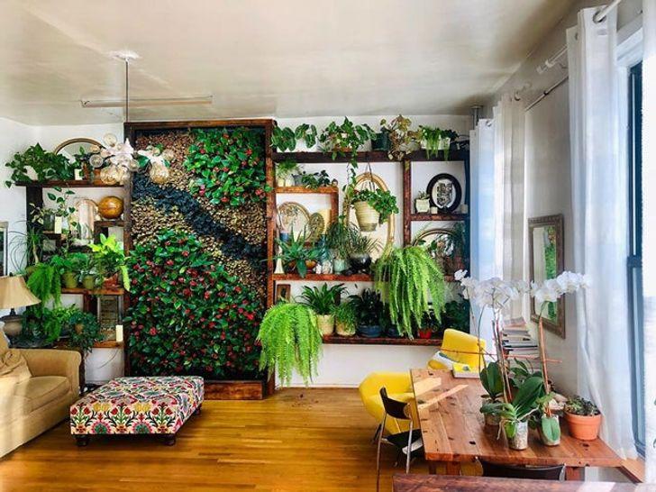 Habitación blanca con piso de madera con muro de plantas y de repisas con macetas