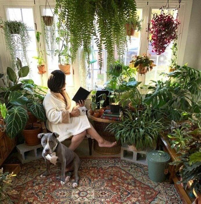 Mujer con vestido blanco leyendo un libro con pasta negra sentada en una habitación llena de plantas
