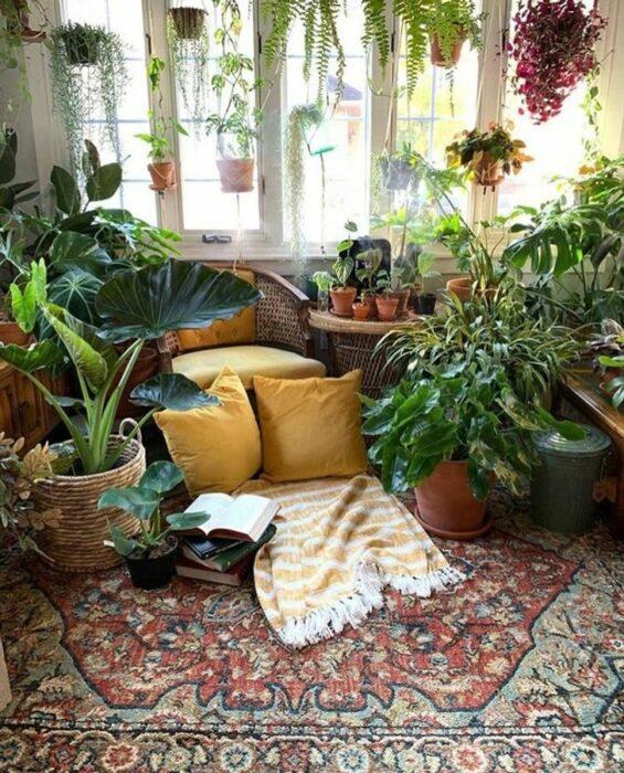 Habitación con alfombra roja con colores y cojines amarillos en una habitación llena de plantas