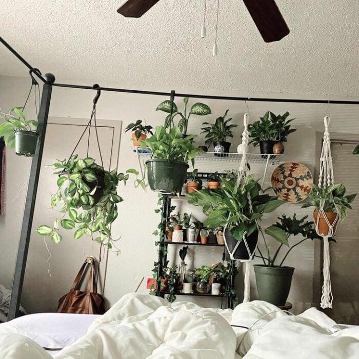 Macetas colgantes arriba de una cama de cobijas blancas