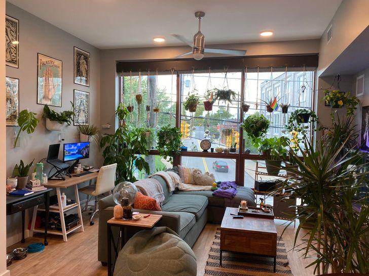 Plantas de interior en habitación amplia cerca de ventana grande con vista a autopista