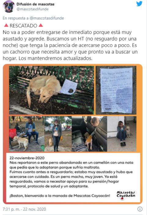Rescatan a perro abandonado en banca con una nota