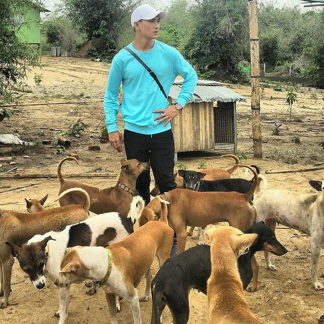 Paing Takhon con playera azul rodeado de perritos callejeros