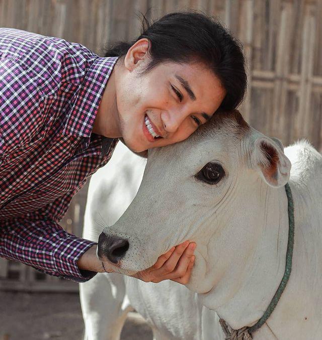 Paing Takhon con camisa roja de cuadros abrazando una vaca blanca
