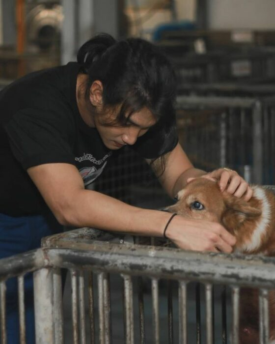 Paing Takhon con playera negra acariciando un perrito café con naranja que está en una jaula
