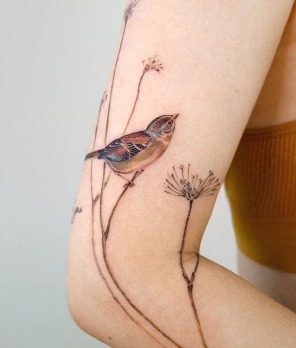 Tatuaje bonito y femenino de ave en el brazo, pájaro gorrión sobre ramas delgadas