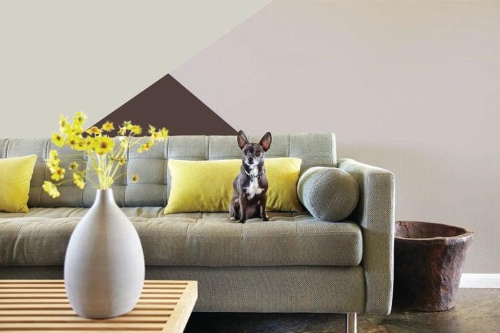 Espacio de sala con pared pintada en tonos neutros sala minimalista y un perro chihuahua