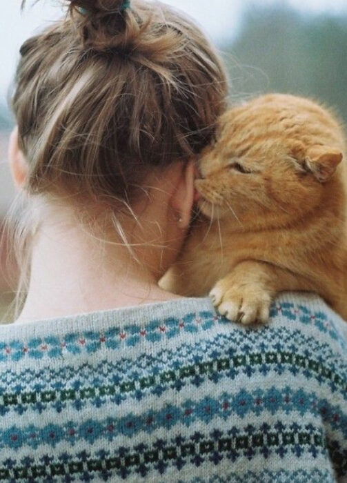 Gatito lamiendo la oreja de su dueña