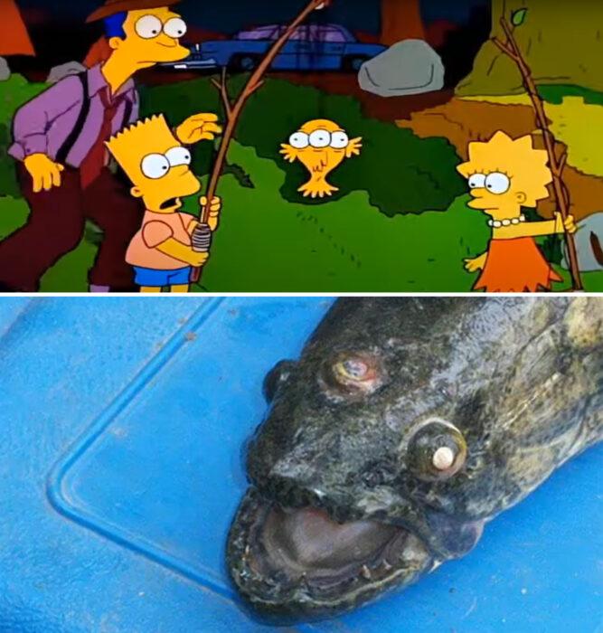Los Simpson y el pez de tres ojos