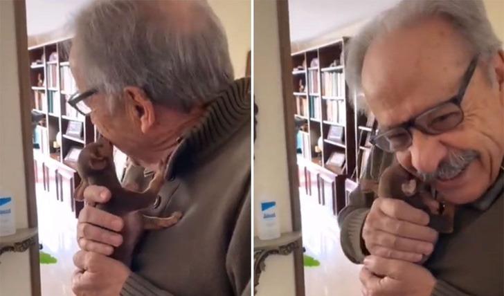 Sorprenden a abuelito con cachorro tiktok