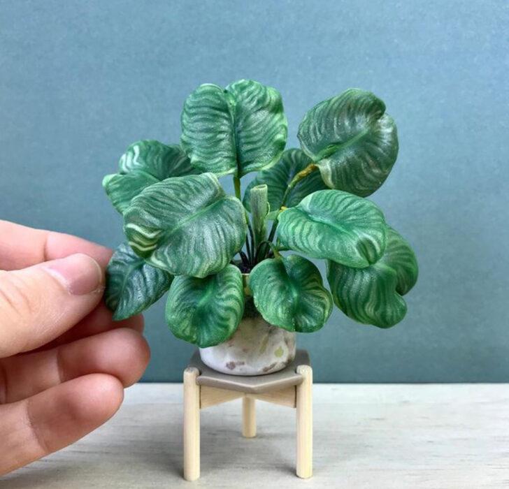 Calathea Orbifolia en miniatura, hecha por Astrid Wilk