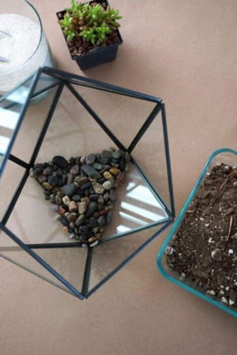 Paso 1 para crear un terrario en pecera