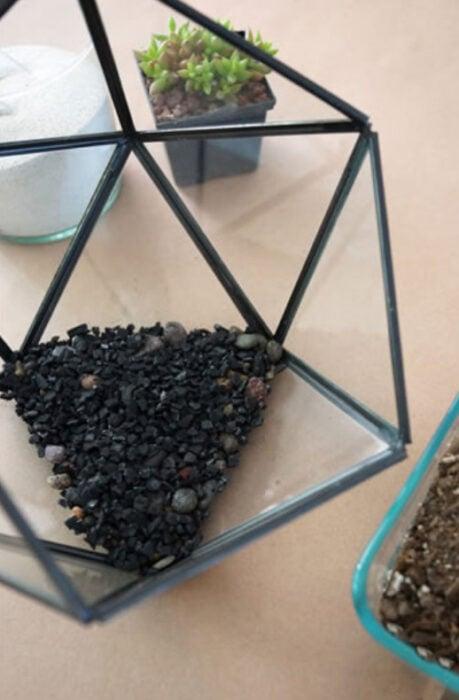 Paso 2 para crear un terrario en pecera