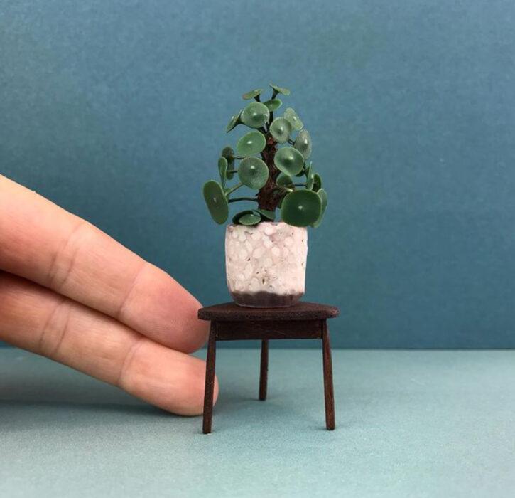 Pilea en miniatura, hecha por Astrid Wilk