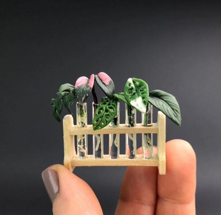 Propagación por agua en miniatura, hecha por Astrid Wilk