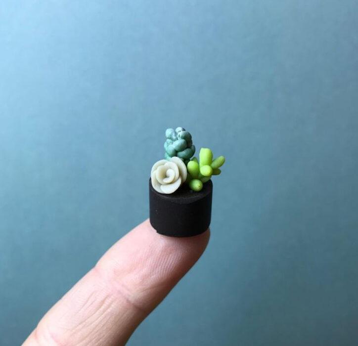 Suculentas en miniatura, hecha por Astrid Wilk