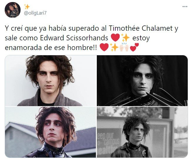 Tuit sobre Timothée Chalamet como el hijo de Edward Scissorhands; joven manos de tijera