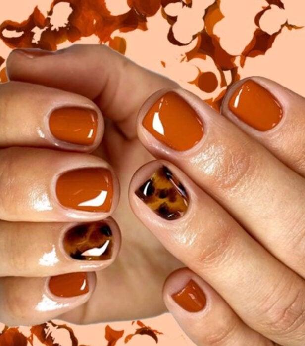 Manicura estilo carey en varios dedos con el resto en tono ladrillo