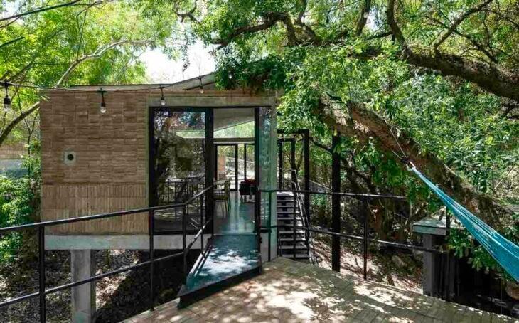 árbol en las afueras de una casa de cristal; 12 Pruebas de que la naturaleza puede ser la mejor amiga de la arquitectura