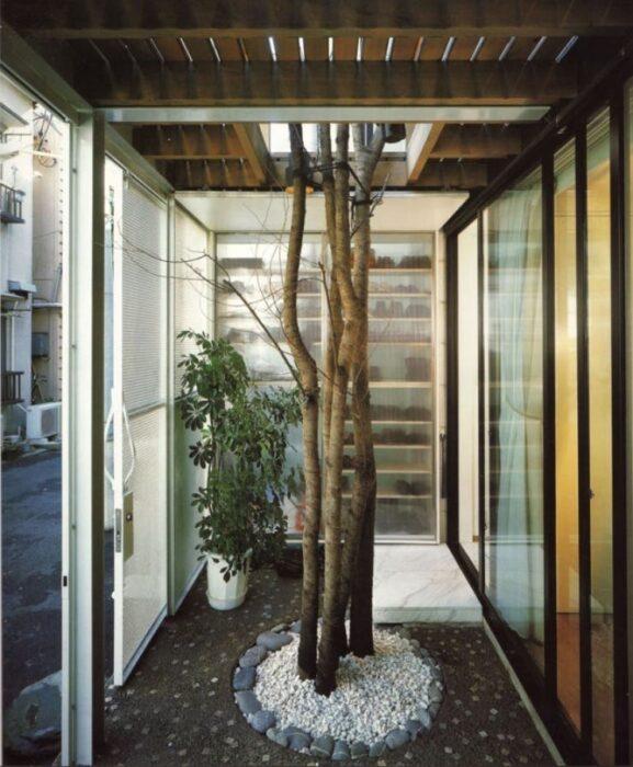 arboles dentro de un pasillo de una casa; 12 Pruebas de que la naturaleza puede ser la mejor amiga de la arquitectura